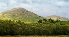 Bonnie Scotland (Osgoldcross Photography) Tags: wood trees sky mountains clouds forest woodland landscape scotland nikon raw hills peaks hdr treescape munroes tonemapped handheldhdr nikond5100