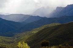 PAYSAGE DE MONTAGNE (cremona daniel) Tags: nature montagne soleil flickr photos corse daniel ngc corsica vert arbres nuages paysages cremona erbajolo
