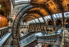 The History to Our Past (Aaron Yeoman) Tags: city uk greatbritain windows red england people urban orange brown motion building london window glass lines stone museum architecture stairs grey hall movement europe arch unitedkingdom terracotta sony curves perspective arches line fisheye staircase gb