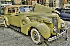 Vintage Thirteen (showbizinbc) Tags: auto car automobile antique vinage