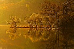 Rydal Water at Dawn (Explored) (Steve Thompson images) Tags: trees sunlight water landscape dawn spring rydal grasmere lakedistrict cumbria thelakes rydalwater canon70200l polarisingfilter canon5dmark2