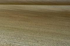 Terra a vista (Edgard.V) Tags: france field countryside cider land terre campo hearth normandie terra campagne façade champ cidre labours faixada