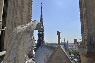 Chimera at Notre Dame de Paris