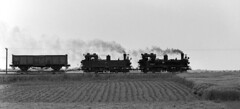 Oschatz - Mugeln freight (RhinopeteT) Tags: germany east oschatz mugeln