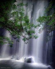 Deep in the Jungle (Steve Corey) Tags: swimming river waterfall costarica falls jungle tropics zoomeffect fotoverdetours centralpacificcoastcostarica
