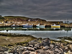 St Abbs harbour (The Mucker) Tags: