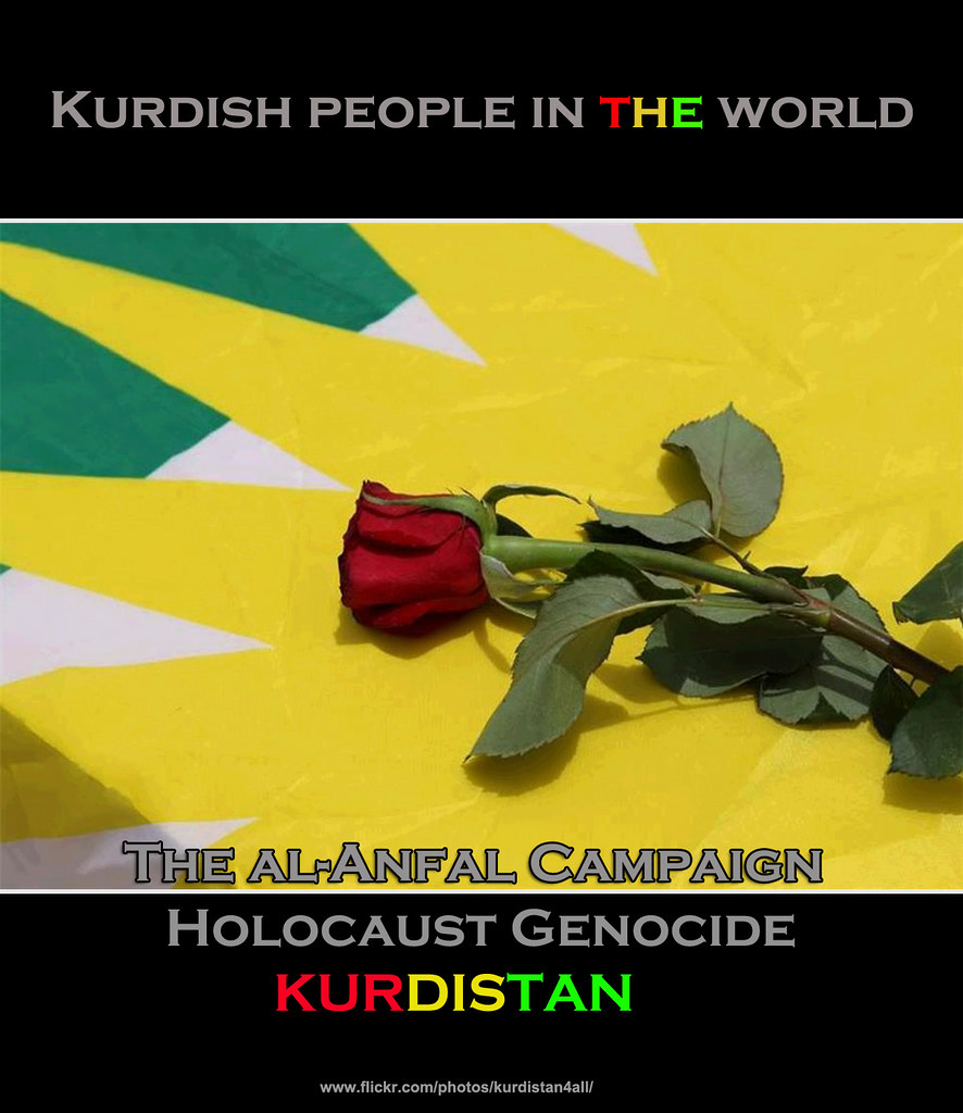 the kurdish genocide in iraq essay Overview of kurdistan - kurdistan is a region located between iran, iraq, syria and turkey the kurds are the biggest ethnicity on the planet without a state to this day.