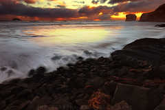 Moari Bay (Ashley Daws) Tags: ocean new sea sky west water clouds bay coast rocks surf waves auckland zealand kelp nz muriwai moari