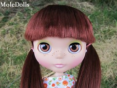 Blythe Custom Commission N.29