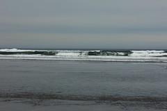 Breakers (blackthorne56) Tags: wood shells beach sand sandy peter driftwood beaches drift iredale shepwreck
