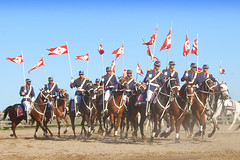 O regimento (Eduardo Amorim) Tags: brazil horses horse southamerica brasil caballo cheval caballos soldiers cavalos pelotas independenceday pferde cavalli cavallo cavalo pferd riograndedosul pampa soldaten hest hevonen campa