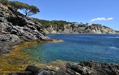 Darboussire (SuzuKaze-photographie) Tags: mer nikon paysage giens 1224f4 d5000 suzukazephotographie