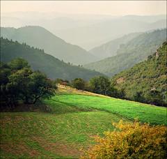 Infinite green layers (Katarina 2353) Tags: summer mountain film landscape nikon europe serbia srbija umadija katarinastefanovic katarina2353