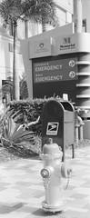 Emergency (Stephen Hilton) Tags: bw mailbox hydrant 35mm blackwhite noiretblanc outdoor emergency triplet lubitel166b delta400 russiancamera