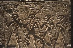 _WMP3192 OK (WM ) Tags: history egipto historia pasado faraones inframundo egiptologa