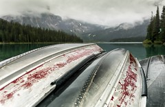 What is soft is strong (Tracey Rennie) Tags: mist lake rain metal evening britishcolumbia canoe emeraldlake wearaway