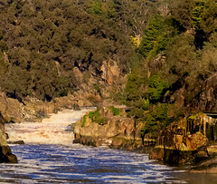 Cataract Gorge (Fat Burns) Tags: tasmania launceston cataractgorge