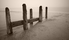 Groynes At Spurn (roddersdad) Tags: beach coast march overcast northsea coastline 2012 groynes spurn spurnpoint coastaldefences canonef24105mmf4lisusm canon1dsmkll bw10stopfilter wwwimagesbyclivecouk copyrightclivejmaclennan