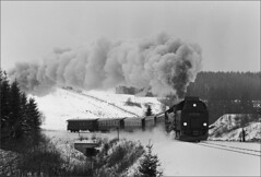 99 7239-9 running bunker first, Hartz Mountains (RhinopeteT) Tags: mountains steam east german railways gauge narrow hartz