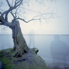 The ghosts of Martham broad (The Old Penfold) Tags: selfportrait 120 6x6 film mediumformat iso100 ghost norfolk pinhole squareformat ghosts analogue zero2000 zeroimage somerton wppd worldwidepinholephotographyday fujireala100 wppd2012