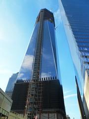 New York(288)