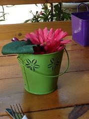 Simplicity (LarryJay99 ) Tags: wood green bucket purple simplicity setting tablesetting tabletop pail minutia ilobsterit