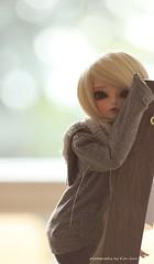 Ryeon (Kim-kun) Tags: family doll bjd balljointdoll danbo danboard ryeon minidanboard kimkun fairylandryeon