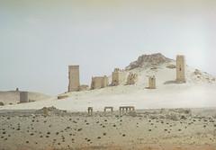 Syria (Philippe Yong) Tags: film 35mm desert kodak syria nikonf2 palmyra syrie palmyre philippeyong wwwpyphotographyfr
