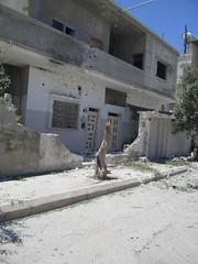 - -  (   ) Tags: un shelling artillery evidence barrage anan homs crimes hims unsc qusair