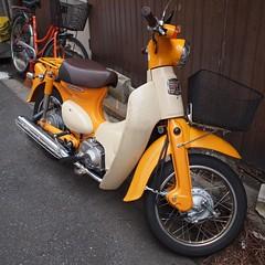 リトルカブ (HONDA Little cub) (Paul_ (shin.ogata)) Tags: honda cub motorcycle ep1 ホンダ 単車 カブ