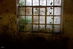 Window (HdB1973) Tags: netherlands zeiss sony carl alpha oisterwijk nld kvl sal1680z variosonnar16803545za leerfabriek a580 minoltaamount provincienoordbrabant geosetter garminetrexlegendhcx variosonnartdt35451680 arrest413 variosonnartdt3545180