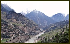 Satluj Valley view from Recong Peo (Indianature4) Tags: india mountains hp april himachal himalayas 2012 himachalpradesh kinnaur peo indianature recongpeo snonymous