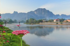 Vang Vieng Laos in Early Morning Light [Explore #2, THANK YOU] (Maria_Globetrotter) Tags: morning pink flower canon river eos morninglight day january peaceful clear explore gerbera laos tubing vangvieng 2011 550d 1585 zienna regionwide