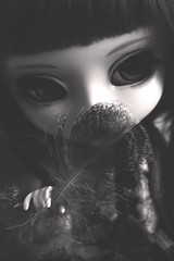 Feather (Holly Hatter) Tags: animal eyes doll feather nb molly planning wig pullip custom jun poupée stica hollyhatter