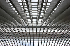 Modern Cathedralism (Noutyboy) Tags: windows abstract lines station architecture modern canon eos belgium belgie patterns may railway calatrava liege luik architectuur 2012 550 nout guillemins 550d eos550d noutyboy