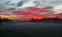 Time To Rise (Annurgaia) Tags: morning red anna mist fog clouds sunrise finland fire early helsinki skies departure hietanen meddow annurgaia annahietanen annahietanenphotography allrightsreservedbyannurgaia