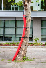 London, May 2007 (Marco Venturini Autieri) Tags: red stilllife abstract colour tree vertical photography one focus colorful image tube nobody cables softfocus unusual tied fullframe curve shape officeblock selectivefocus brightcolour unusualangle cabletie buildingexterior