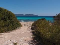 Espagne - Majorque - Cala Nau (gil35les) Tags: mallorca espagne cala nau millor majorque