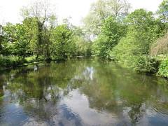 River Wandle (John Steedman) Tags: uk greatbritain england london river unitedkingdom grossbritannien wandle     grandebretagne