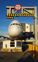 Emirates - A6-EDU - London Gatwick (LGW/EGKK) (Andrew_Simpson) Tags: uk plane airplane fun sussex high funny westsussex unitedkingdom aircraft uae humour aeroplane apron emirates laugh airbus a380 gb ek height gatwick jumbo 380 lgw emiratesairlines gatwickairport greatbritian planephoto londongatwick superjumbo emiratesairline airside avgeek egkk 380800 londongatwickairport planepic a380800 whaleplane planegeek avporn fwwab a6edx aviationgeek