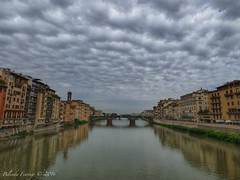 Daytime (Belinda Fewings (3 million views. Thank You)) Tags: street city italy colour building tourism beautiful beauty architecture clouds out outside outdoors florence seaside italia arty artistic bokeh creative bridges best depthoffield firenze daytime colourful lovely pontevecchio riverarno beautify pontevecchiobridge panasoniclumixdmc pbwa creativeartphotograhy belindafewings
