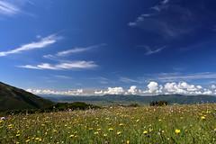Spring (andreacapponi.eu) Tags: canon eos andrea usm ef 1740 6d f4l capponi wwwandreacapponieu