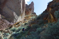 Getting out of this canyon was hard work (rozoneill) Tags: lake oregon river carlton butte desert hiking painted canyon vale trail backpacking saddle blm uplands owyhee honeycombs