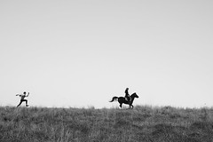 Run (lucycawood) Tags: bw horse silhouette landscape run humour playful