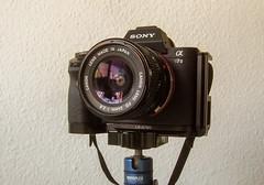 Sony A7II - CANON FD 24mm 1:2.8 (gporada) Tags: canon lens wideangle 2016 objektiv a7ii vintagelens fdlens altglass festbrennweite oldlens fd24mm128 sonya7ii ilce7m2 fdnexadapter gporada emountadaption canonlensfd24mm128