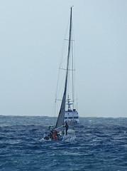 16061701776foce (coundown) Tags: genova mare vento velieri sailingboat ussmasonddg87 ddg87 ussmason mareggiata piloti