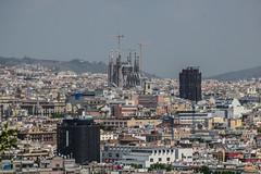 Barcellona 2016 (Luciano ROMEO) Tags: spagna barcellona catalunya gaud rambla boqueria cattedrale