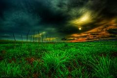Distant Thunder (miTsu420) Tags: sunset sky nature rain clouds dark landscape nikon vibrant tokina trinidad agriculture trinidadandtobago 1116mm d5200