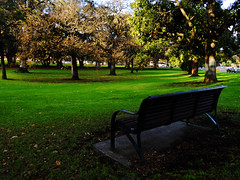 250616_002 (Lanthanumglass) Tags: park australia melbourne fujifilm xf1