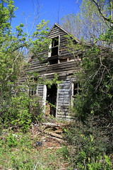 This is the Hansel & Gretel House (ariel is . . .) Tags: old roof house abandoned home virginia wooden cool decay empty neglected ruin forgotten va abandonment ruraldecay southcentral rustytin socc housefoundlastfallfoundagaininspringabitmorevisible amherstcountyimalmostpositive oopsthatllteachmetobecarefulwhenimpostingpix